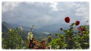 Bei Kandy, auf der Rundreise