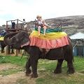 Elefantenreiten, Sri Lanka Rundreise, Elefant Reiten